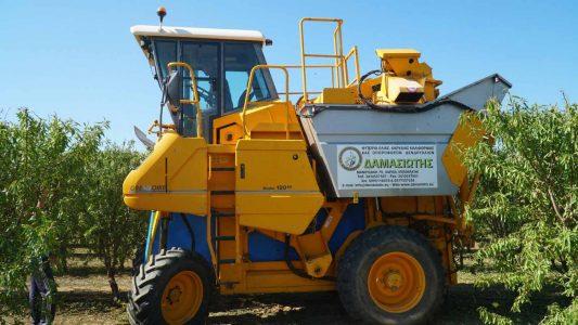 Δενδροκαλλιέργειες με μέλλον και με μηχανική συγκομιδή